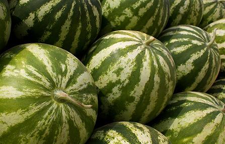 Skinny On Melon