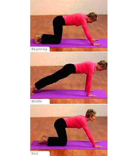 Planks exercise target muscles for Plank muscles worked diagram
