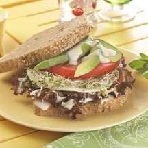 California Dreamin' Veggie Sandwich