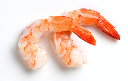 Image of shrimp